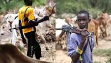 Fulani Herdsmen Killing Us Like Chicken, Delta Community Cries Out |The Republican News